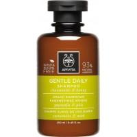APIVITA Gentle Daily - Απαλό Σαμπουάν Καθημερινής Χρήσης Με Χαμομήλι & Μέλι 250ml