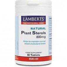 LAMBERTS PLANT STEROLS 800MG 60tabs