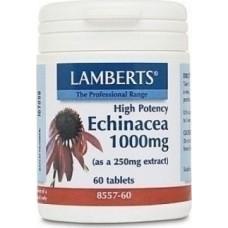 LAMBERTS ECHINACEA 1000MG 60tabs