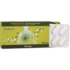 PharmaQ Mastiha Therapy 30 ταμπλέτες