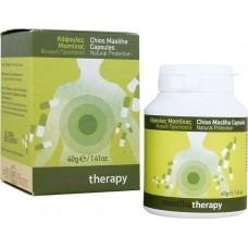 PharmaQ MastihaTherapy 90 ταμπλέτες